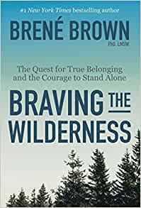 braving the wilderness for living well alone project